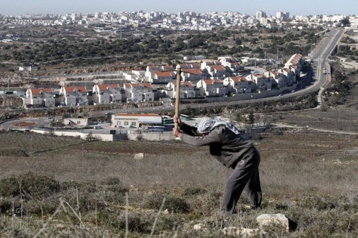 Al-Haq Calls on the EU to Support the Proposal for a Wide Ban of Trade with and Support for Illegal Settlements